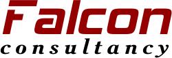 Falcon Consultancy